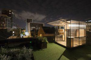 על גגות לונדון משהו קורה הלילה