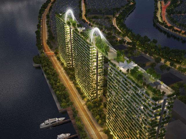 מרוב בניינים רואים את היער